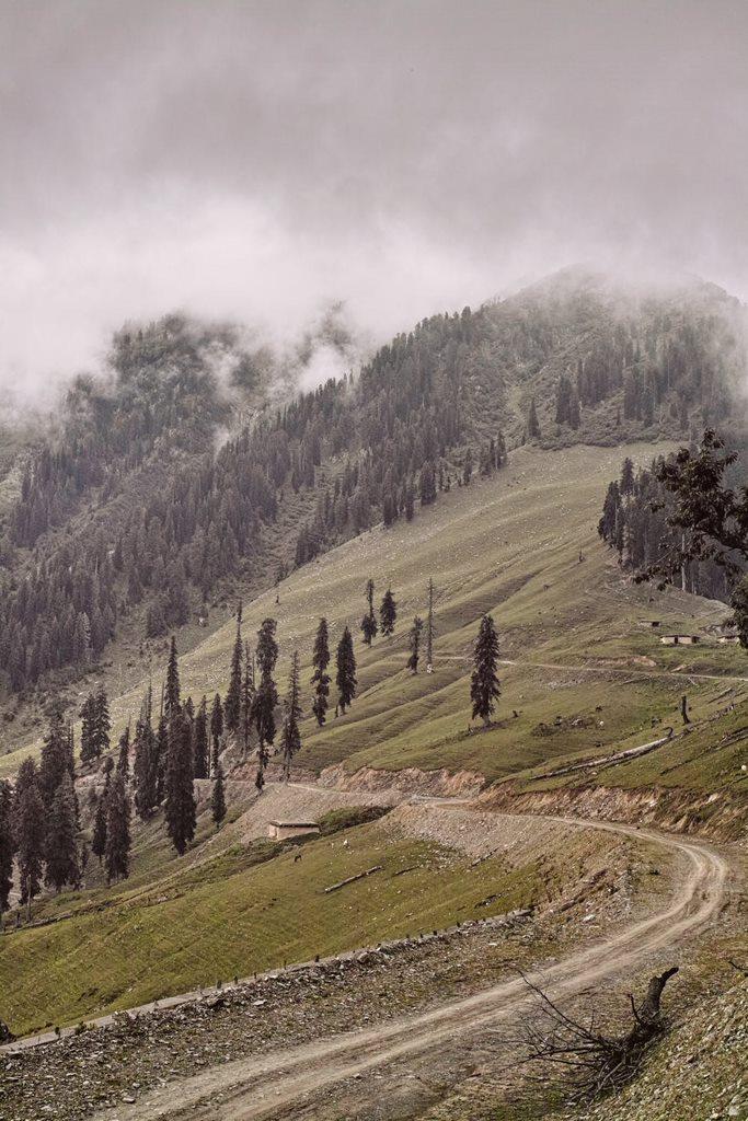 Back on Bhaderwah-Bani road